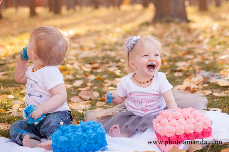 Calgary Cake Smash Photographer Twins Smash Amanda Cook