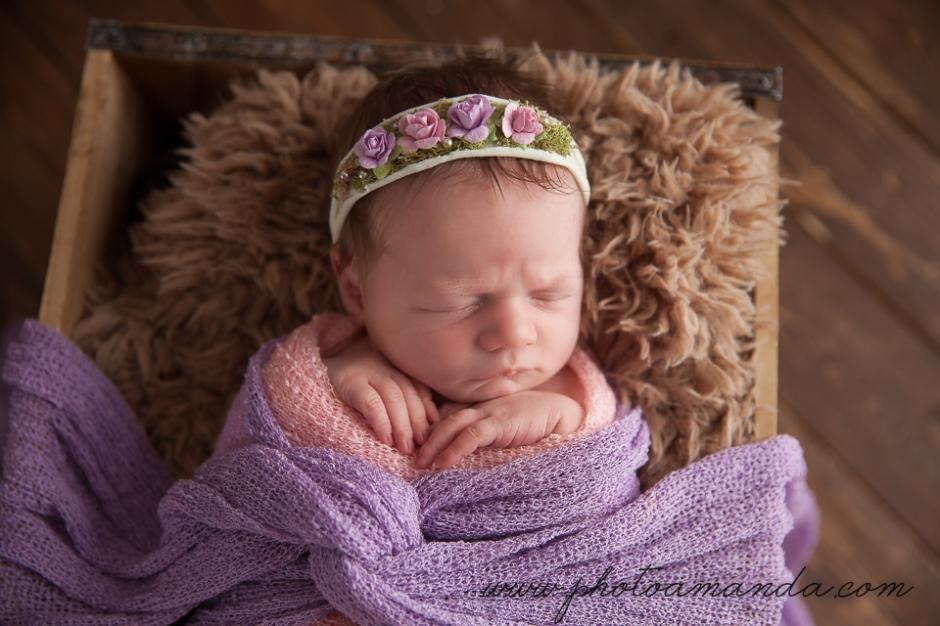 27nov16-calgary-newborn-4